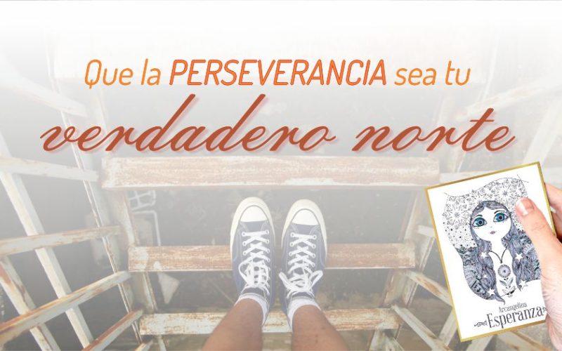 Que la perseverancia sea tu verdadero norte